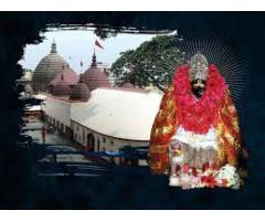 07296927151 Love Marriage Specialist Aghori Baba Ji Kolkata